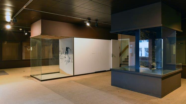 Diskussion um Kunstmuseum kommt nicht gut an – derweil plant Marco Grob ein Haus der Fotografie