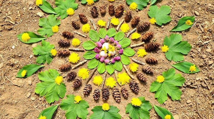 Was der Wald hergibt! 100 Fotos von Natur-Mandalas, die unsere Leser gebastelt oder entdeckt haben