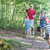 Am Wochenende sind die OL-Läufer los: Der 35. Aargauer 3-Tage-Lauf steht vor der Tür