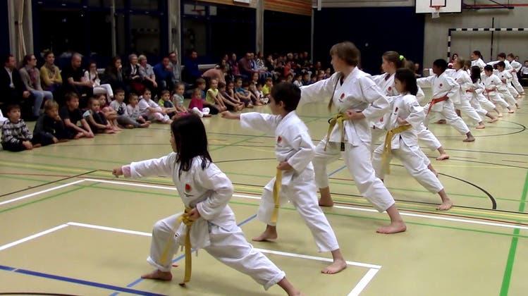 Beeindruckende Karate-Vorführung