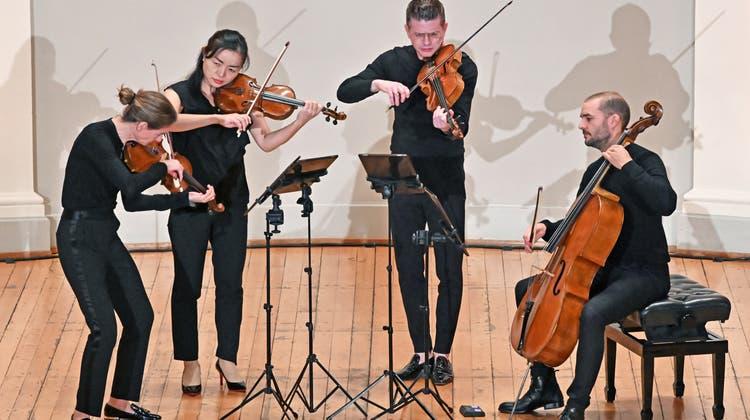 «KulturTupfer» trotzt Corona-Krise: Das Galatea Quartett spielt vor Mini-publikum Werke von Beethoven und Góreck