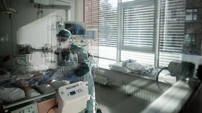 Die Hingebungsvollste Krankenschwester