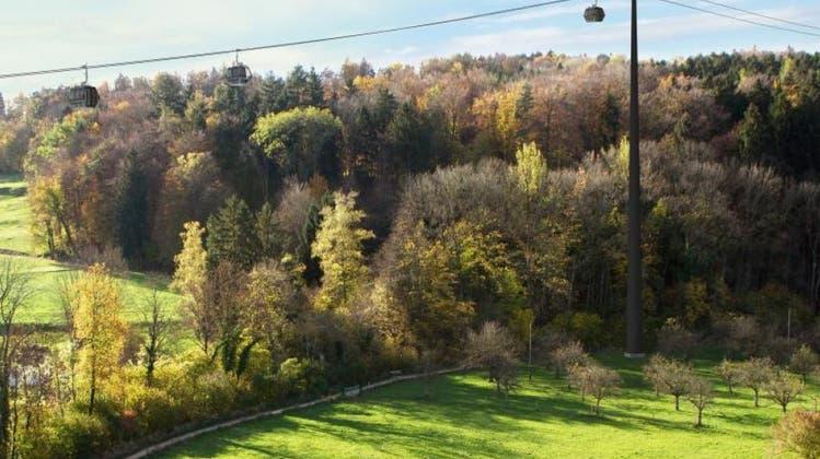 Kampf gegen Windmühlen? Stadt Dübendorf zieht Urteil zur Zoo-Seilbahn weiter