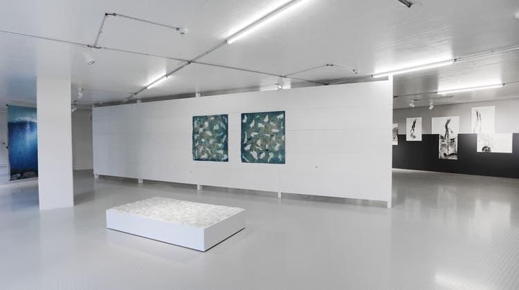 Stiftung öffnet neues Fenster auf die Kunst