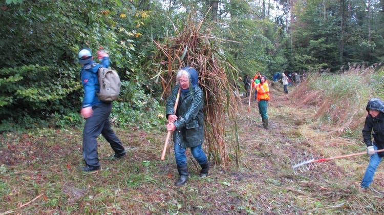 Zwei Herbsteinsätze zur Pflege der Naturschutzgebiete in Niederrohrdorf