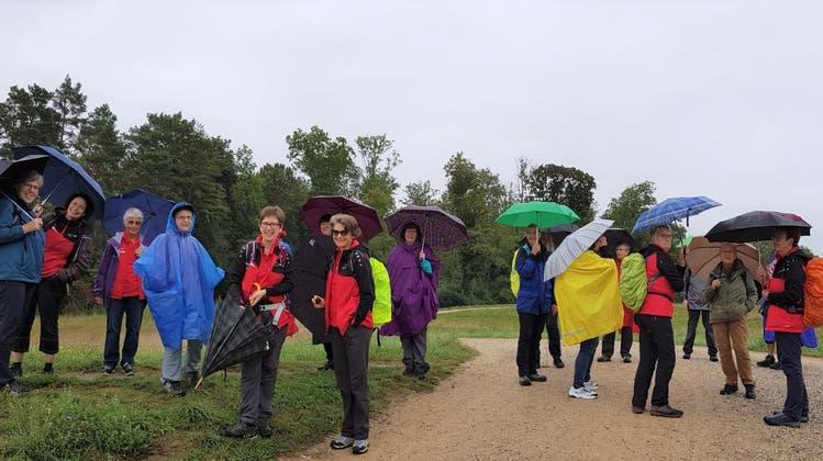 Auf Vereinsreise ins Naturschutzgebiet Thurauen