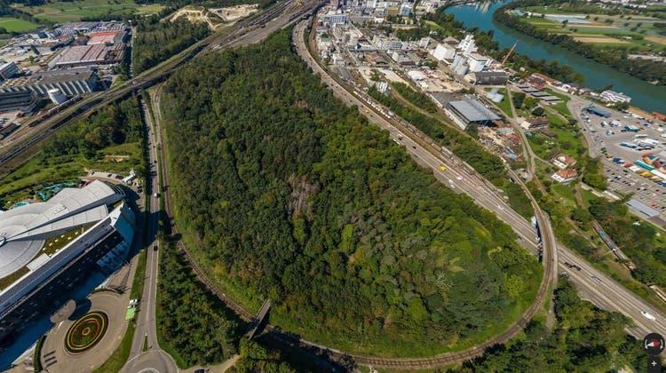 «Wahnwitz sondergleichen»: Prattler Hardwald soll als Ausgleichsfläche dienen