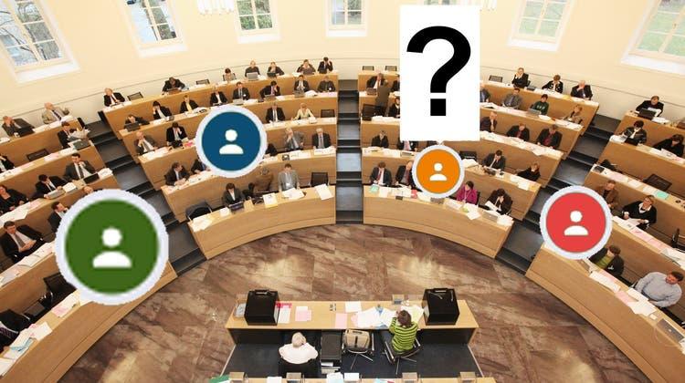 Grüner, männlicher, älter – klicken Sie sich durch den neu gewählten Grossen Rat