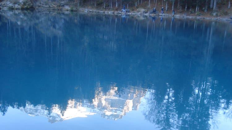 In der dem Blausee im Berner Oberland angegliederten Fischzucht sind in den letzten Monaten Zehntausende Tiere gestorben. (HO)