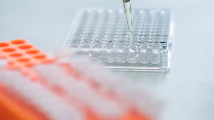 Schock bei Pharma-Firma in Birsfelden: 250 Mitarbeitende verlieren den Job