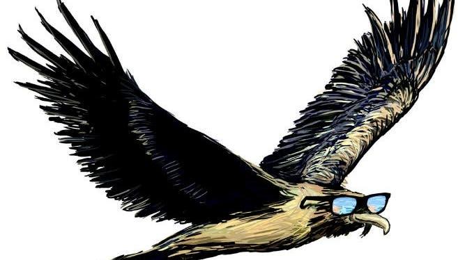 Bartgeier Sardona fliegt jetzt mit einem «goldigen Chrönli» ans Meer