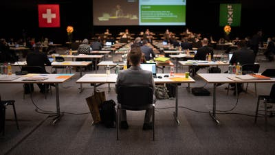Ein Freund des Holzes: SVP-Kantonsrat Walter Freund macht sich für Förderung des einheimischen Holzes stark. (Bild: Benjamin Manser)
