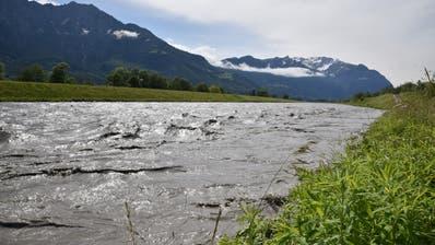 Die Sanierung der Rheindammabschnitte bei Sevelen, Triesen und Schaan beginnt bereits im Herbst 2021. (Bild: Heini Schwendener)