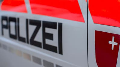 Polizei löst Party mit 80 Teilnehmenden in Unteriberg SZ auf