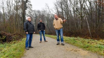 Die Waldbesitzer Hansruedi Hänni, Alexander Gubler und Ernst Lieber im betroffenen Thur-Auenwald. (Bild: Donato Caspari)