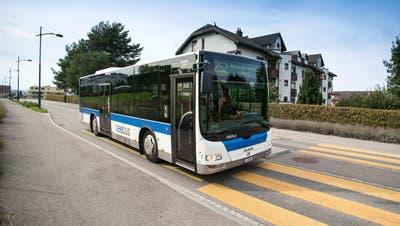 Ein Altstätter Unternehmen übernimmt den Seebus. Auch Tübach erhält wieder einen Anschluss Richtung Rorschach. (Bild: Rudolf Hirtl)