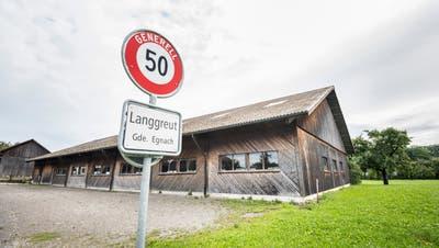 2018 gab es Streit um die Reithalle Langgreut. Nun plant der Kavallerieverein Egnach eine eigene Halle. (Bild: Andrea Stalder (19. August 2019))