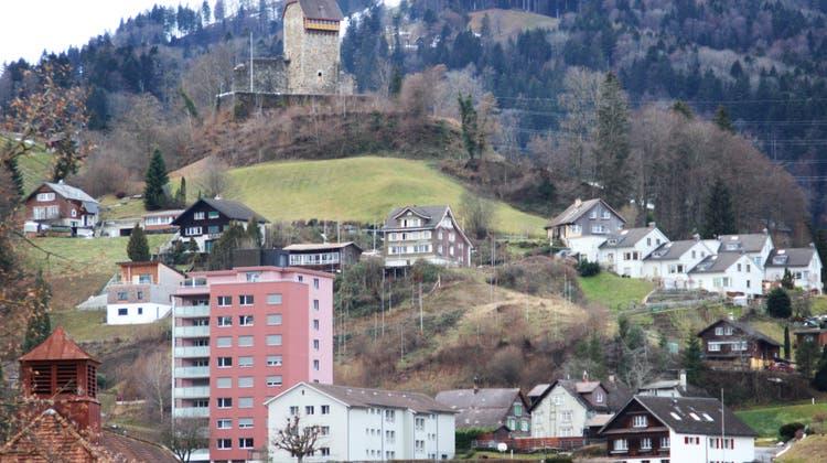 Die Bauvisiere stehen auf dem Steilhang oberhalb der Ibergstrasse. Am linken Bildrand sieht man das früher realisierte Terrassenhaus. (Bild: Martin Knoepfel)