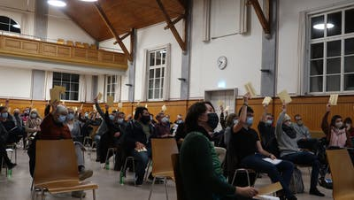 Markus Thalmann versuchte eine seitens Landbesitzer gewünschte Umzonung den Stimmberechtigen zu erklären. ((Bild: Emil Keller))