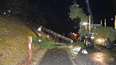 Als dieser Baum im Liechtenstein auf die Strasse fällt, verletzt er einen Motorradlenker. (Bild: PD)