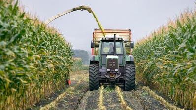 Schweizer Landwirtschaft soll umweltfreundlicher werden, findet der Bundesrat. (Keystone)