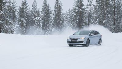 Zuhause auf der Rallyepiste? Nicht nur: Hierzulande steht Subaru vorallem für praktische, robuste Alltagsautos. (HO)