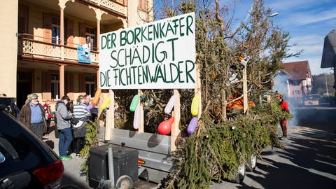 Fasnachtsumzug Romoos. Im Bild: Romoos Trychler unmd Jodlerklub Edelweiss : Borkenkäfer-BefallFotografiert am 20. Februar 2020 in Romoos(Manuela Jans-Koch | LZ) (Manuela Jans-Koch | Lz)