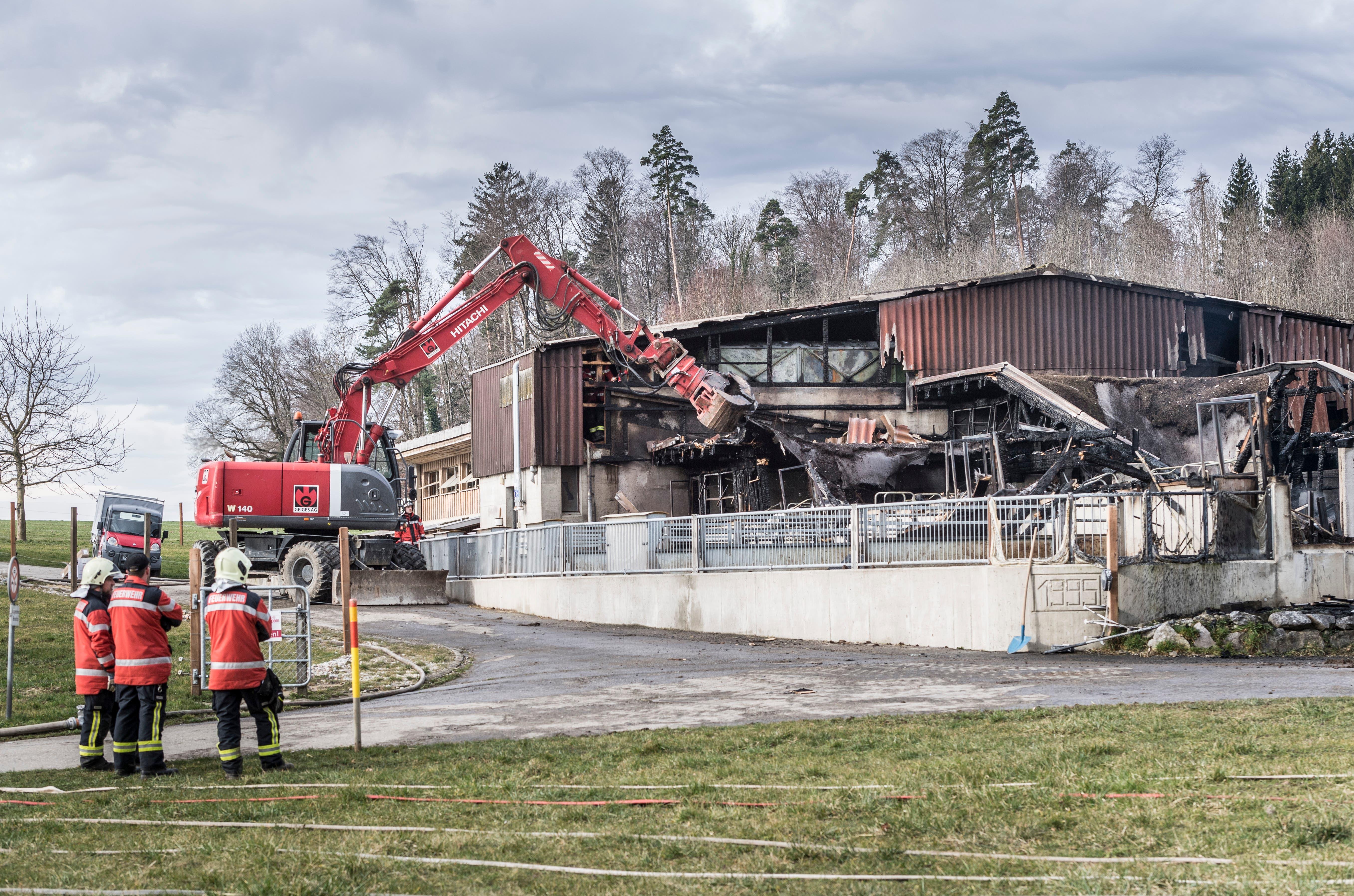 Der Schweinestall auf dem Berghof in Herdern ist abgebrannt.