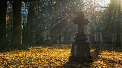 Das Sterbehilfe-Verbot ist in Deutschland nicht mehr länger gültig. (Pixabay)
