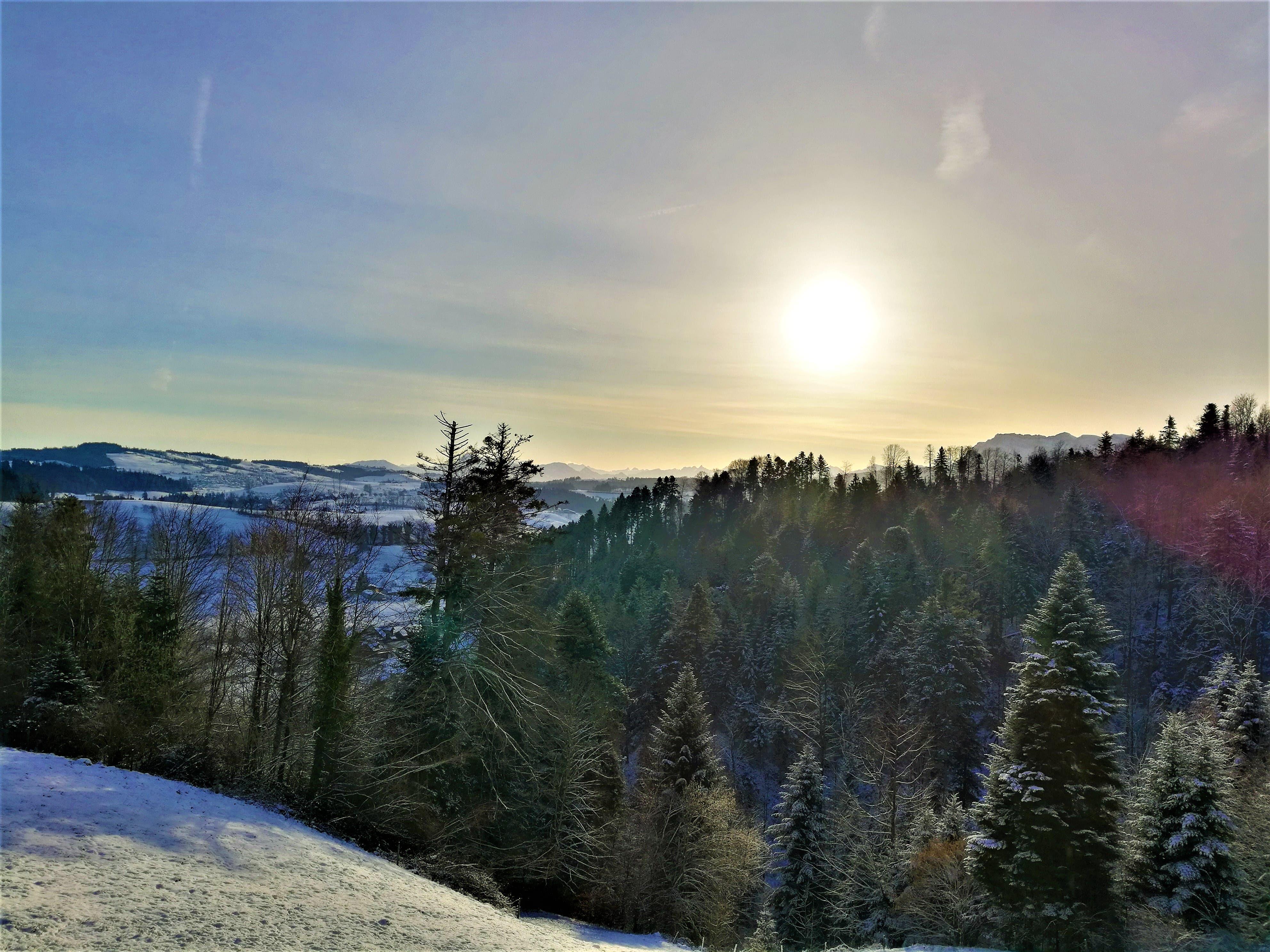 Wunderschöne mystische Morgenstimmung über der Winterlandschaft in Menznau.
