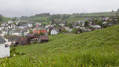 Die Initiativen zum Schutz der Luzerner Kulturlandschaft kommen vors Volk