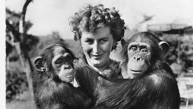 Edith Pischl-Linder mit Schimpansen. (PD)