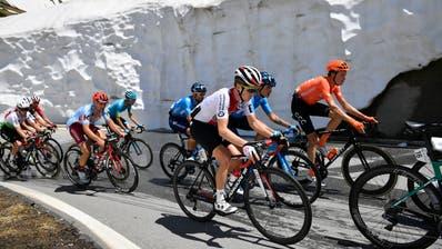 Patrick Schelling (vorne) mit der Elite der Bergfahrer während der Königsetappe der Tour de Suisse. (Gian Ehrenzeller / KEYSTONE)