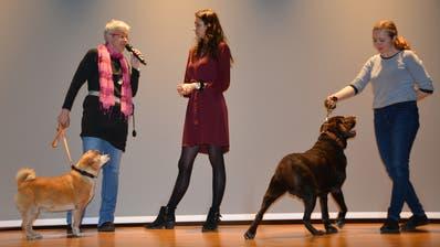 Bea Müller, Moderatorin Julia Flückiger und Alice Elgnerova mit Hündin Jessy und Rüde Sam. ((Bild: Stefan Böker))