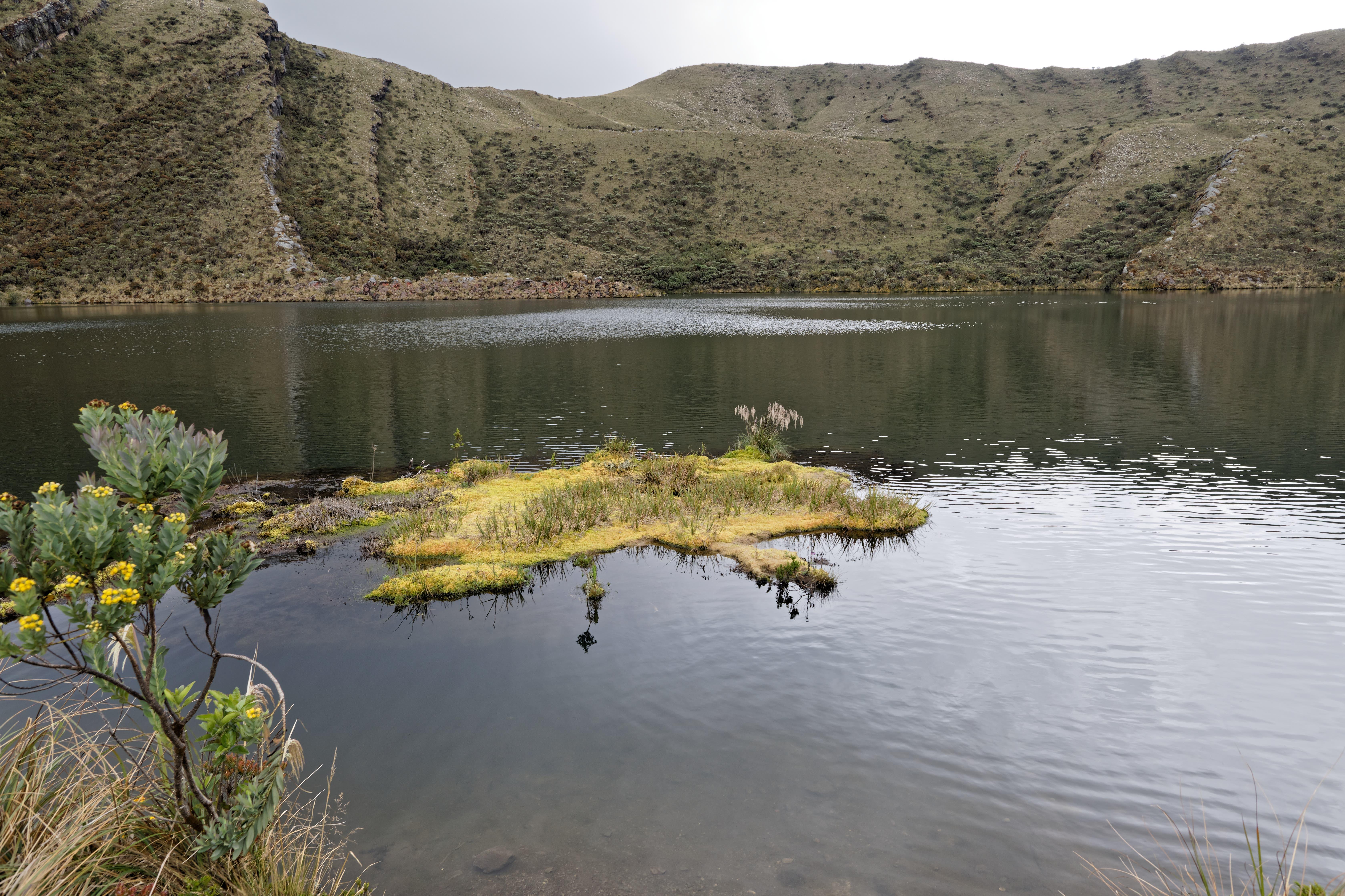 Im Umland von Bogotá ist der Chingaza Nationalpark zu finden. Die Vegetation das Paramo ist etwas Besonderes und der Siecha-See ein Highlight.