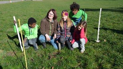Yannick Wälle sowie Nicole, Enya und Neva Jud haben ein Mausloch entdeckt, bei dem sie nun eine Falle anbringen (von links). Rechts oben Tobias Wälle. (Bild: Beat Lanzendorfer)