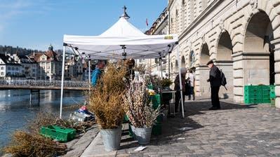 Ein Blumenstand am Wochenmarkt vom Dienstag. (Bilder: Patrick Hürlimann)