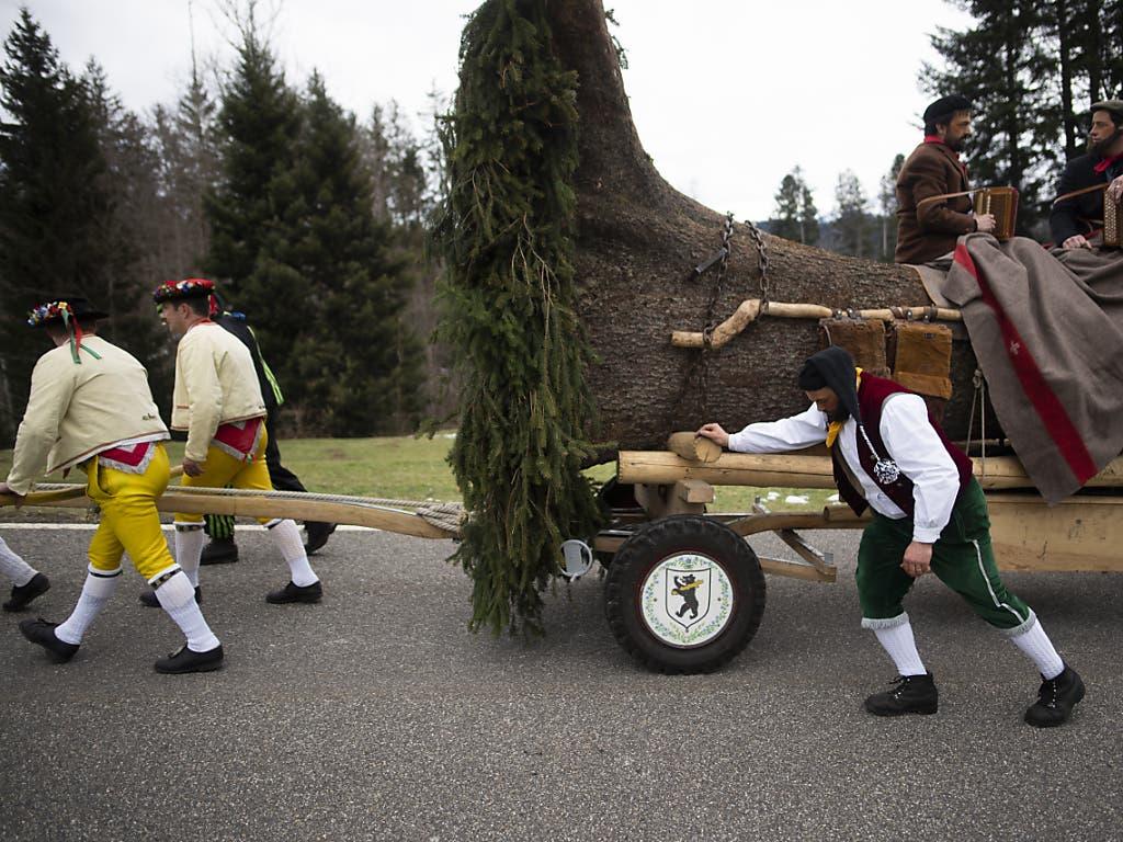 Der Blochmontag markiert in Appenzell Ausserrhoden das Ende der Fasnachtszeit. Verkleidete Männer ziehen dabei einen geschmückten Baumstamm durchs Appenzeller Hinterland, der anschliessend versteigert wird.