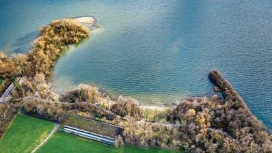 An diesem schönen Flecken hätten Bootshafen und Werft angelegt werden sollen. (Bild: Christian H. Hildebrand (Zug, 11. März 2020))