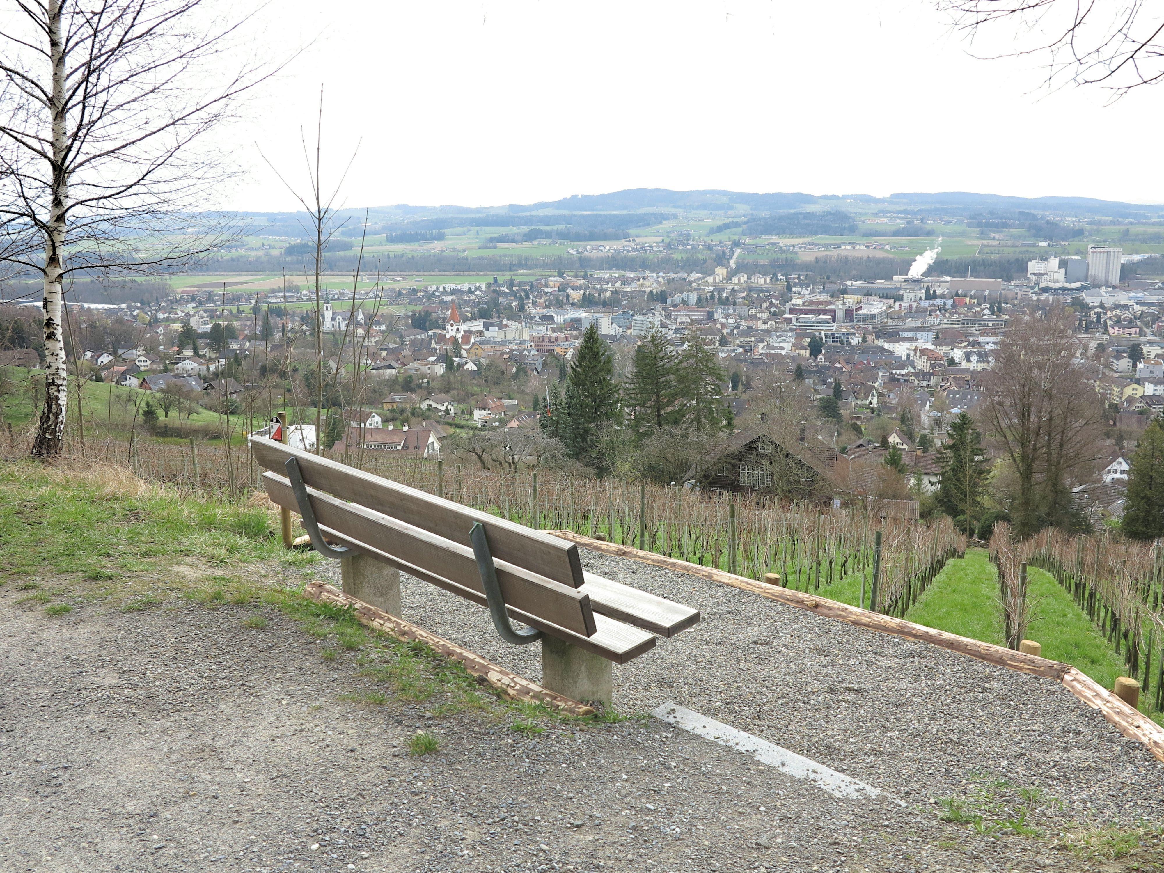 Panoramablick über Weinfelden, bis nach Bürglenund zum Säntis.