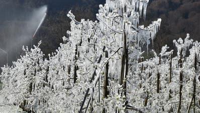 Die durch das gefrierende Berieselungswasser gebildeten «Eisskulpturen» sind eindrucksvoll. (Bilder: Thomas Schwizer)