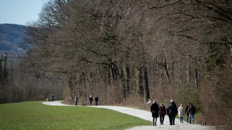 Ein Spaziergänger stiess auf ein seltenes Fundstück. (Symbolbild) (Keystone)
