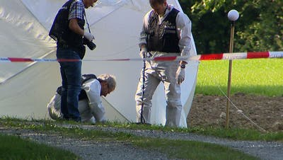 Der mutmassliche Mord geschah am 9. September 2015 im Gebiet Lochermoosin Ganterschwil. (Bild: Beat Kälin/BRK News)