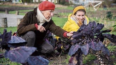 Mehr Garten für mehr Gärtner: In Frauenfeld ist Urban-Gardening Bedürfnis und zugleich Erfolgsgeschichte