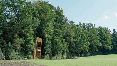 Ist Naturschützern ein Dorn im Auge: Die geplanten zwei Holztürme, die eine Aussichtsplattform bilden sollen. (Visualisierung: PD)