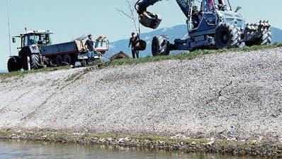 Um die Abflusskapazität zu erhöhen, wurde an mehreren Stellen Letten abgetragen. Nun werden Jungbäume angepflanzt, damit dem Kanal entlang die gewohnte Allee-Struktur wieder entsteht. (Bild: radi)