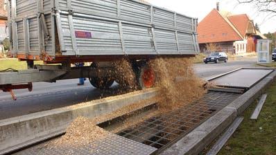 Die heimischen Holzschnitzel können nach dem Nein zum Holzschnitzel-Wärmeverbund Büelriet nicht vor Ort verwendet werden können. (Bild: Archiv)