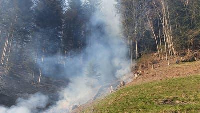 Ein Plakat für ein Feuerverbot im Kanton Luzern. (Bild: PD)