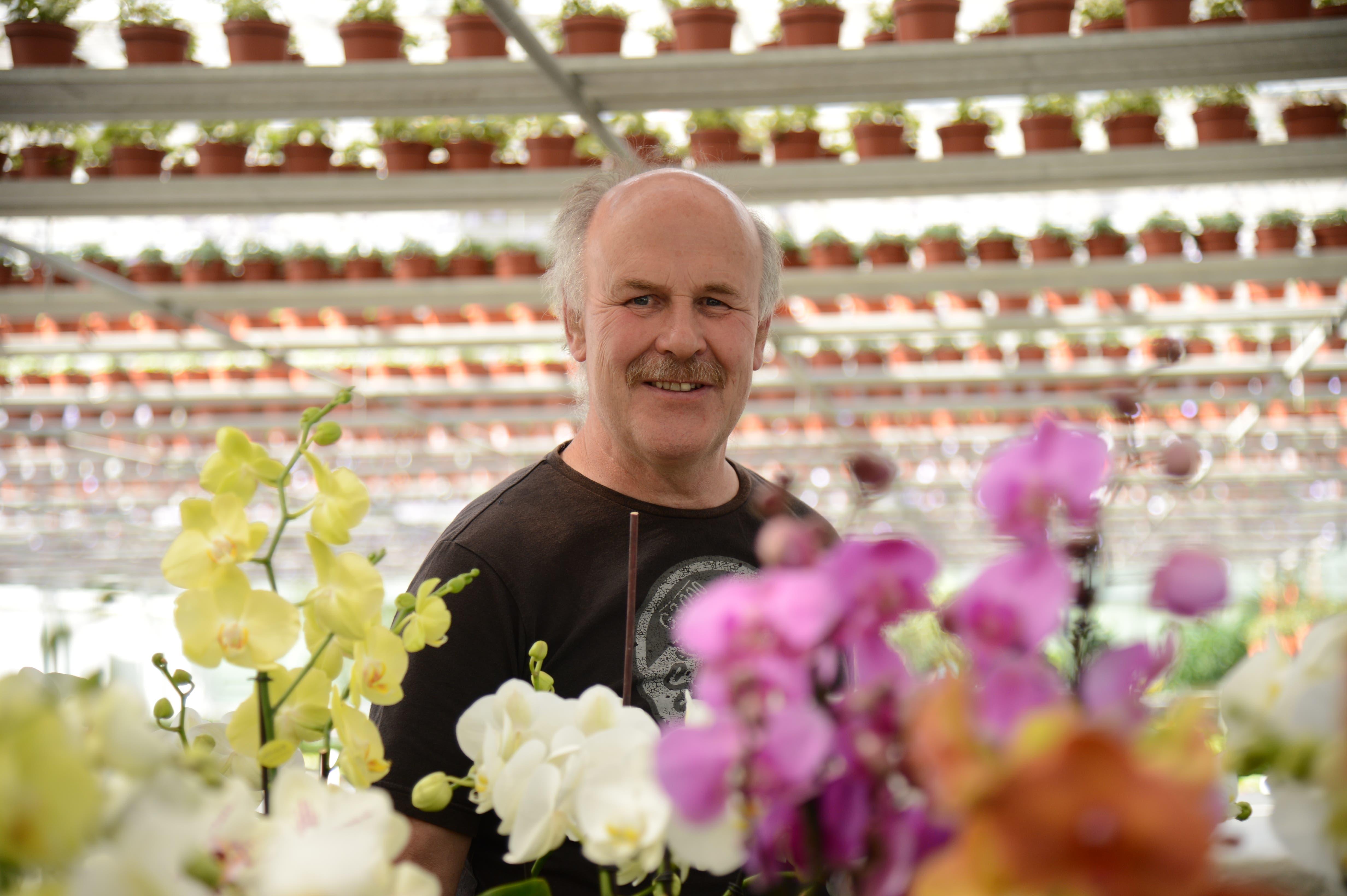 Gärtnerei Bürgin-Inhaber Daniel Sutter: «Wir sind dabei, hochzufahren.»