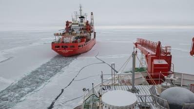Coronavirus - Forschungsschiff «Polarstern» unterbricht seine Drift